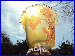 Deux Tulipes relief en verre pour lampe à pétrole